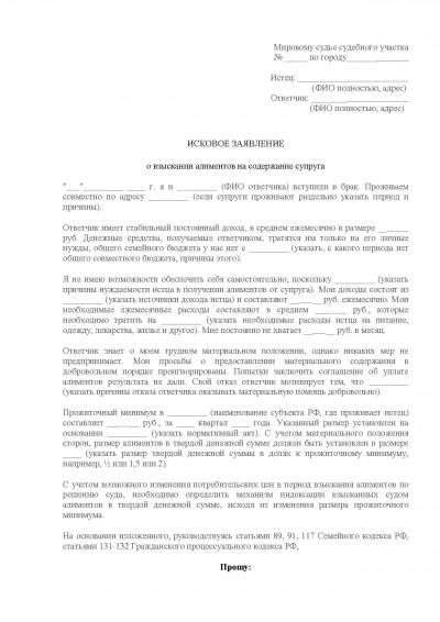 Образец искового заявления о взыскании алиментов на содержание супруги до 3 лет