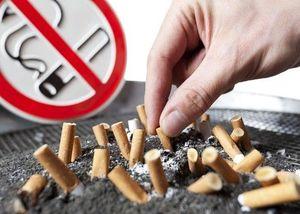 Как призвать к ответственности за курение в подъезде
