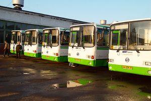 Виды льгот на проезд в общественном транспорте для пенсионеров