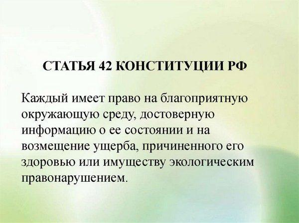 статья 42 Конституции РФ