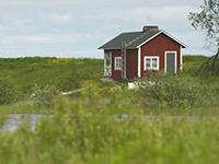 порядок оспаривания кадастровой стоимости земельного участка