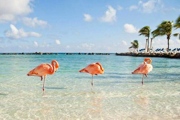 Нужна ли виза россиянам для поездки на Кубу?