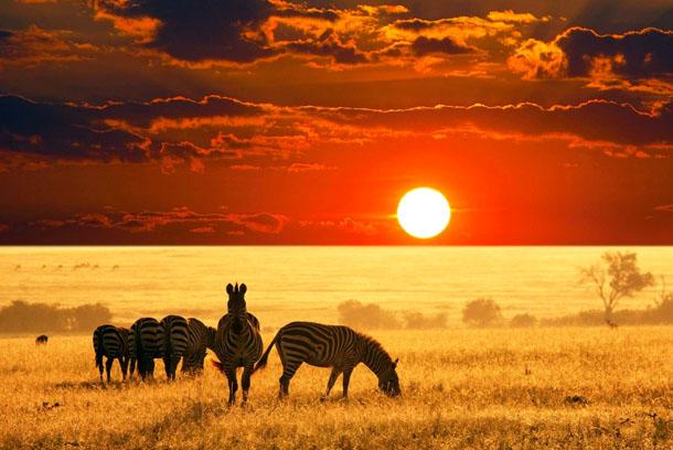 Нужна ли виза россиянам для поездки в Танзанию?
