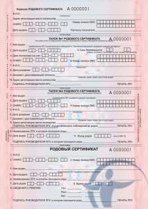 Что такое родовой сертификат