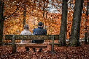 Сколько пенсионеров получают среднюю пенсию в России