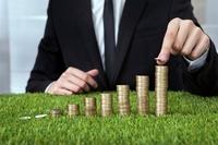 Срок уплаты земельного налога