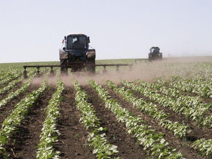 Какие существуют субсидии для сельского хозяйства