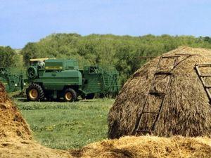 Кредиты с государственной поддержкой для сельского хозяйства