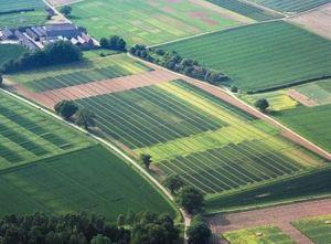 Какие категории земель выделены в России?