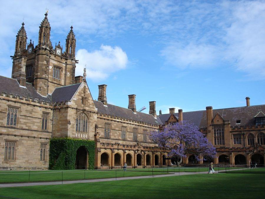 The University of Sydney ун-т Сиднея