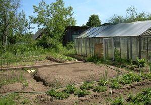 Особенности участков в садовом товариществе