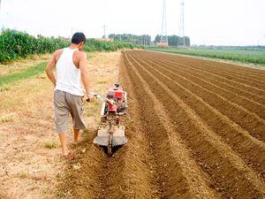 Что относится к землям для личного подсобного хозяйства?