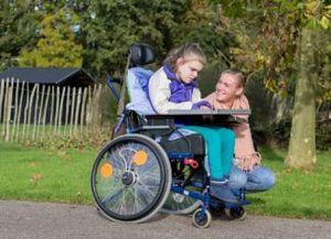Цели использования бесплатной земли для инвалидов